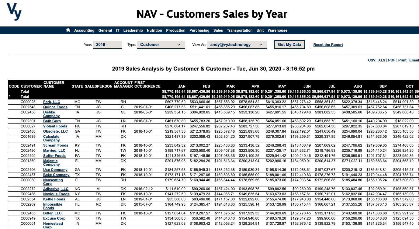Vy NAV Reports - Customer Sales by Year