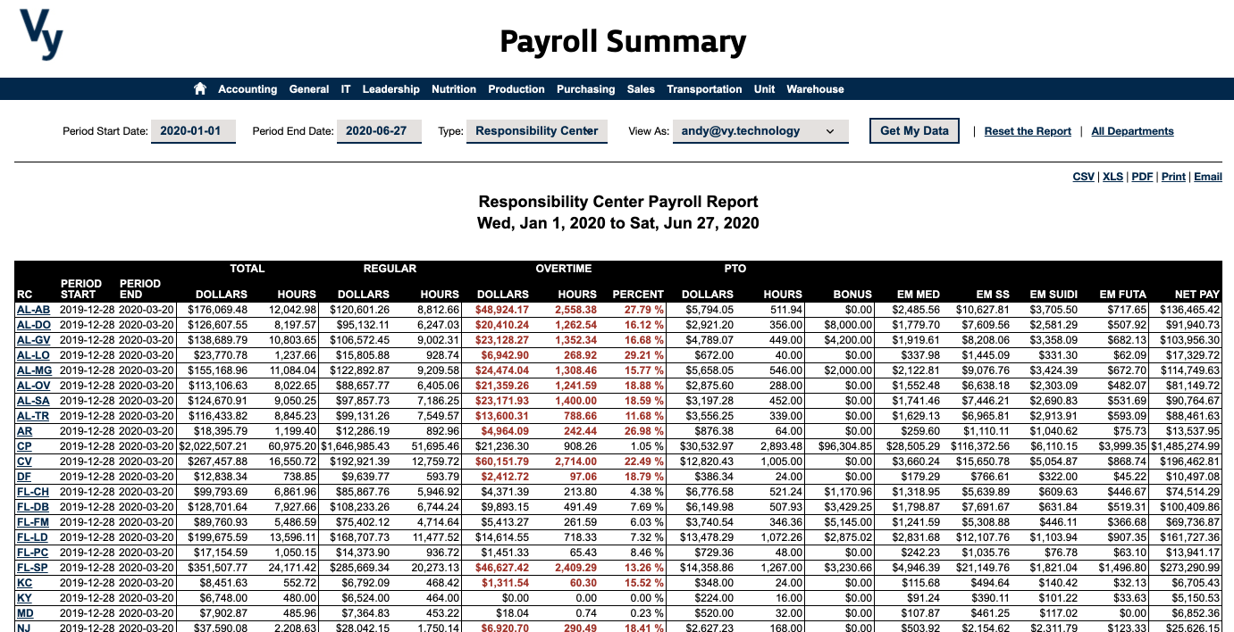 Vy NAV Reports - Payroll-Summary